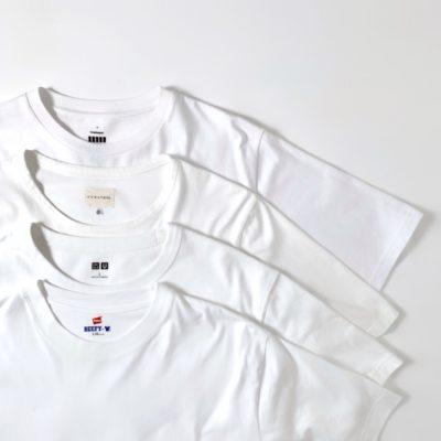白Tの定番ブランド4つ